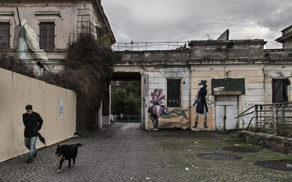 ROMA-30-min